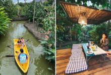 Photo of This Cafe Has Petting Zoos, Rowboats And It's Perfect For A Quick Escape To Nature