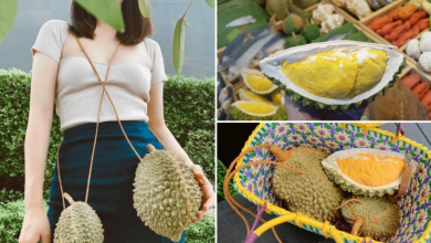 Photo of This Shop In Thailand Sells Realistic Durian Bags You'll Wish To Add To Your Wardrobe