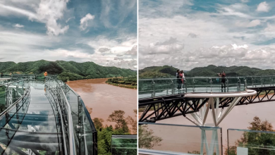 Photo of New Glass Skywalk At Thailand Allows Visitors To Enjoy Aerial View Of Mekong River