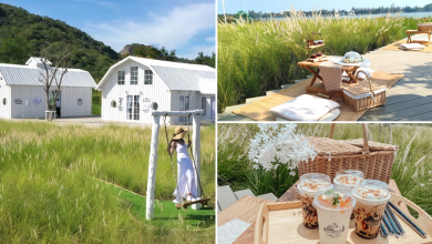 Photo of This Lakeside Cafe In Thailand Is Surrounded By A Lush Green Wheat Field