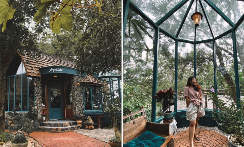 Photo of This Enchanting Forest Cafe In Thailand Looks Straight Out Of A Fairytale