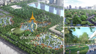 Photo of Bangkok's Largest Forest Park Is Now Under Expansion And Will Be Open In 2022