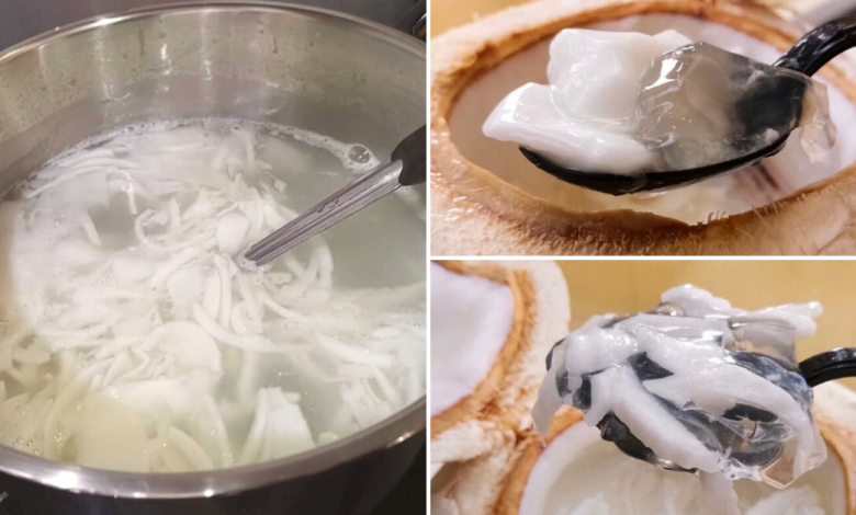 Photo of Here's How To Make Refreshing Coconut Jelly Using Only 5 Ingredients