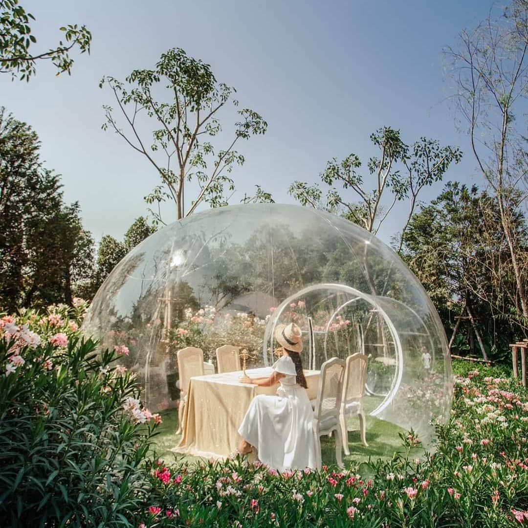 Bubble In The Forest Cafe Thailand